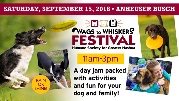 Wags to Whiskers Festival Banner 9-15-18