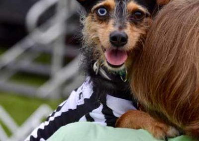 W2W2018-Dogs&Guests115