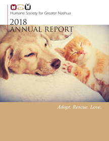 Front cover 2018 annual report